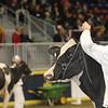 Royal16_Holstein_1M9A0772