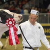 Royal16_Holstein_1M9A0426