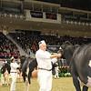 Royal16_Holstein_1M9A0380