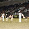 Royal16_Holstein_1M9A0460