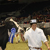 Royal16_Holstein_1M9A0720