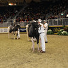 Royal16_Holstein_1M9A1171