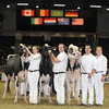 Royal16_Holstein_L32A4892