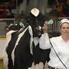 Royal16_Holstein_1M9A1229