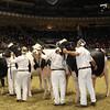 Royal16_Holstein_1M9A1209