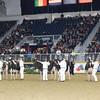 Royal16_Holstein_1M9A1627