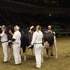 Royal16_Holstein_1M9A1797