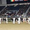 Royal16_Holstein_1M9A1628