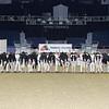 Royal16_Holstein_L32A3975