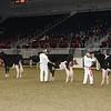 Royal16_Holstein_21M9A0042