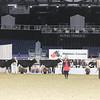 Royal16_Holstein_1M9A9921
