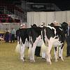 Royal16_Holstein_21M9A0350