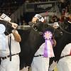 Royal16_Holstein_21M9A0358