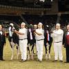 Royal16_Holstein_21M9A0365