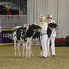 Royal16_Holstein_21M9A0275