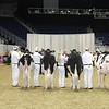 Royal16_Holstein_L32A3893