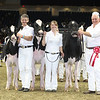 Royal16_Holstein_L32A4111