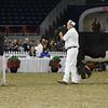 Royal16_Holstein_L32A4002