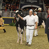 Royal16_Holstein_21M9A0164