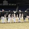 Royal16_Holstein_L32A3971