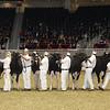 Royal16_Holstein_1M9A9977
