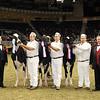 Royal16_Holstein_21M9A0364