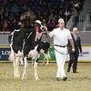 Royal16_Holstein_L32A4071
