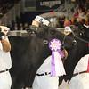 Royal16_Holstein_21M9A0356