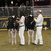 Royal16_Holstein_21M9A0267