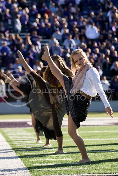 Photo by Hannah Hunsinger | The Collegian<br /> <br /> KSU vs. West Virginia, on Oct. 26, 2013 in Bill Snyder Fmaily Stadium