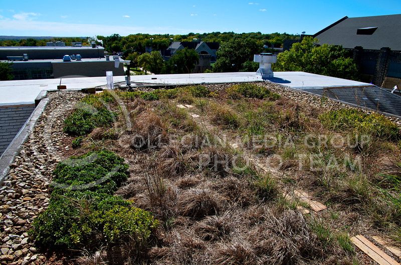 The upper green roof at Seaton Hall shows a mix of green, brown, and yellow as the different varieties of grasses and forbs react differently to various environmental conditions.  Started in 2007, the green roof project allows students and faculty to study how green roofs change the urban heat island effect and their influence on  storm water runoff.