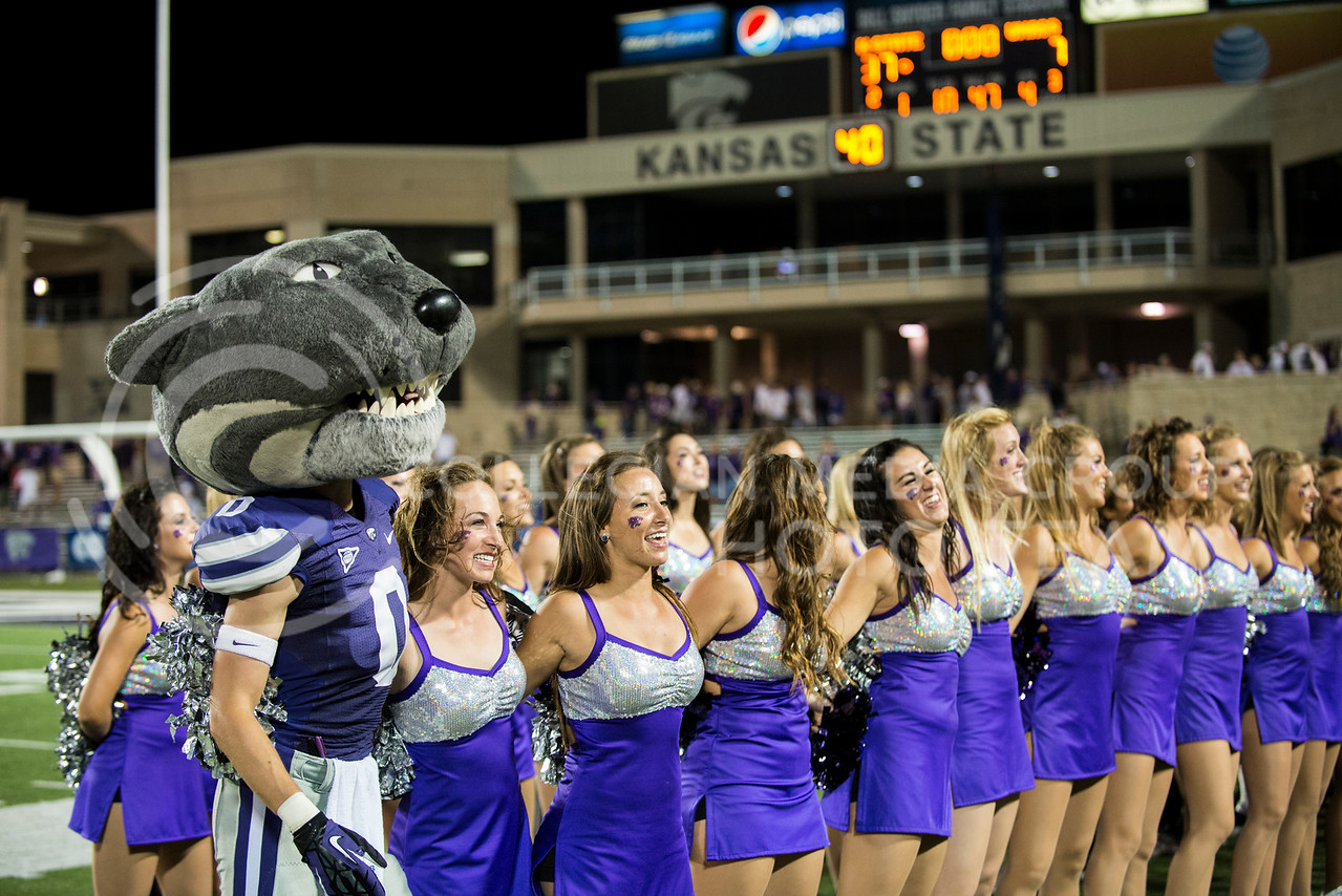 Willie sawys with the cheerleaders at the marching band plays the alma mater after the KSU vs UMass game on Sept. 14, 2013. Photo by Hannah Hunsinger | Royal Purple