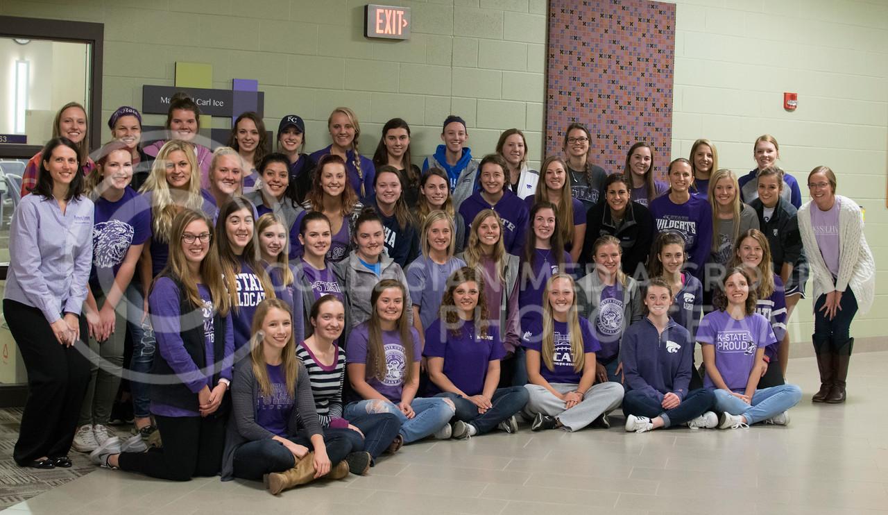 Kansas State Student Speech Language Hearing Association- KSSSLHA