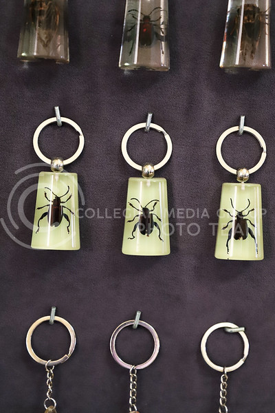 Keychains sold at the Insect Zoo. (Monica Melber | Collegian Media Group)