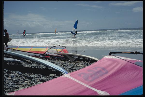 Water Sports - Royalty Free - Sailboarding
