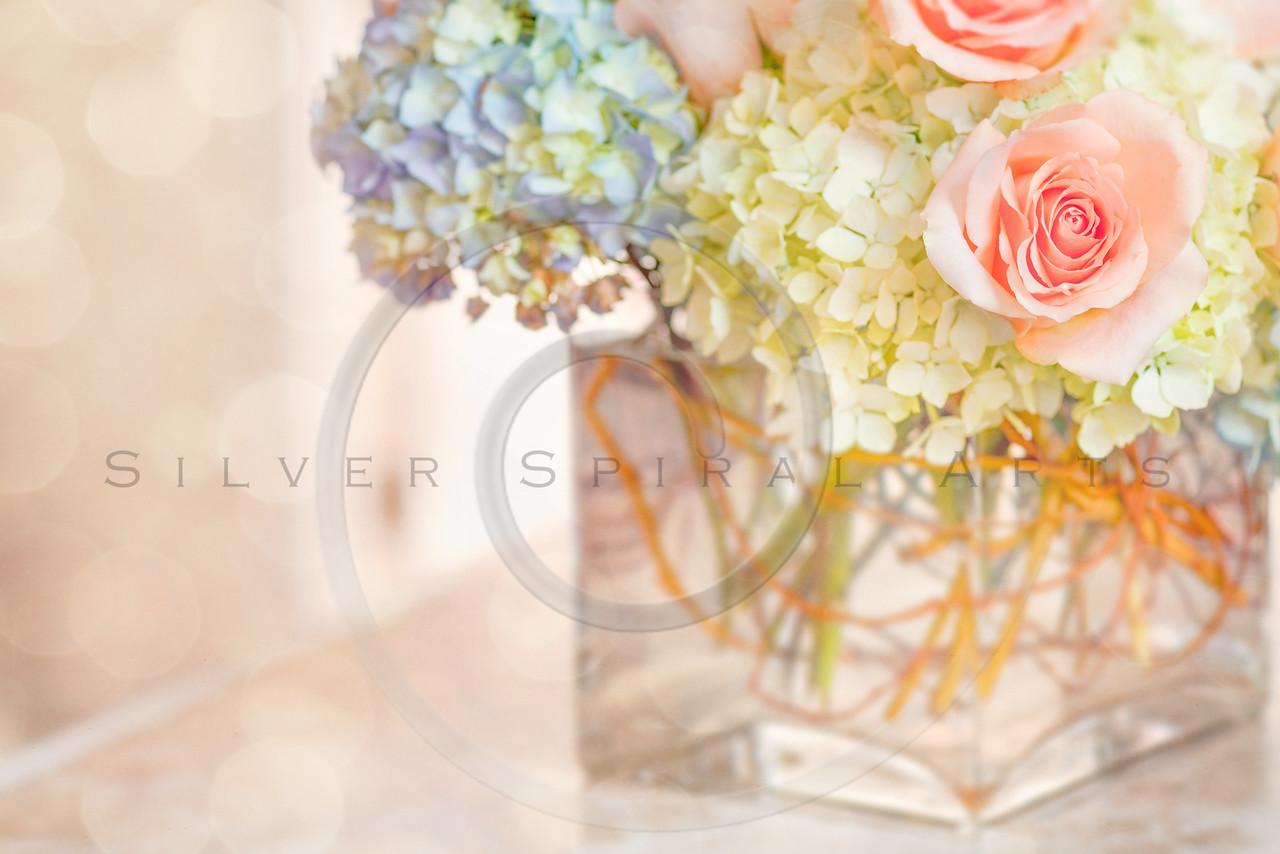 Peach Rose Blue Hydrangea Glass Vase Bokeh Background
