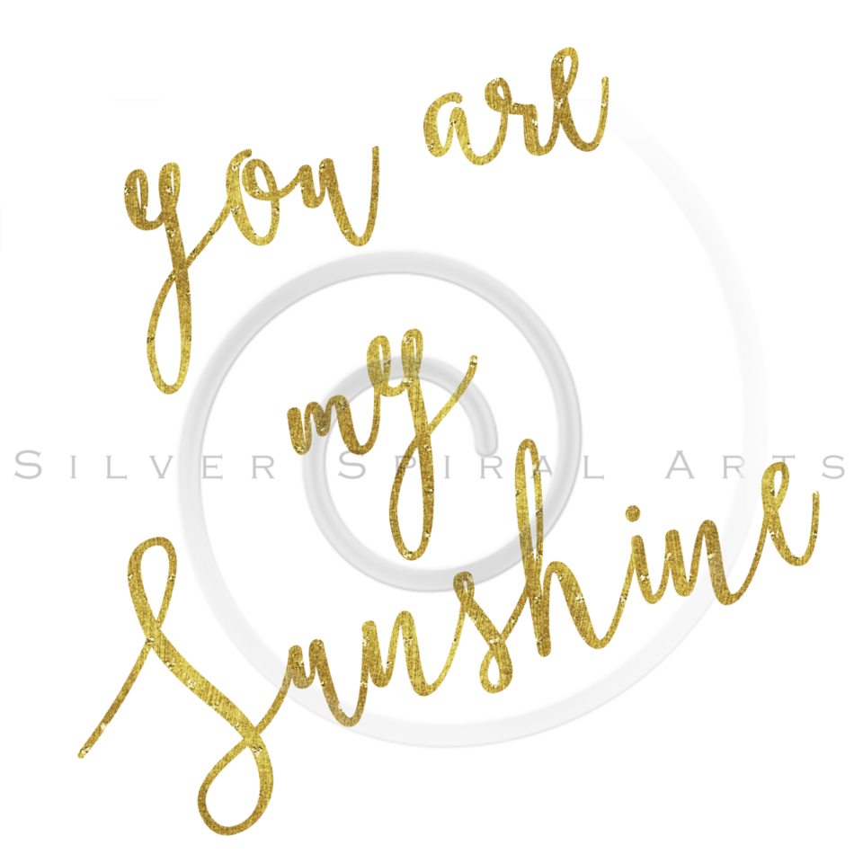 You Are My Sunshine Gold Faux Foil Metallic Glitter Quote Isolated on White Background