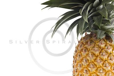 fresh Florida pineapple isolated on white