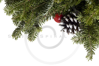 Christmas Evergreen decoration on white