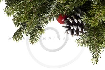 Christmas Evergreen decoration on white