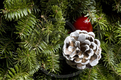 Christmas Evergreen decoration