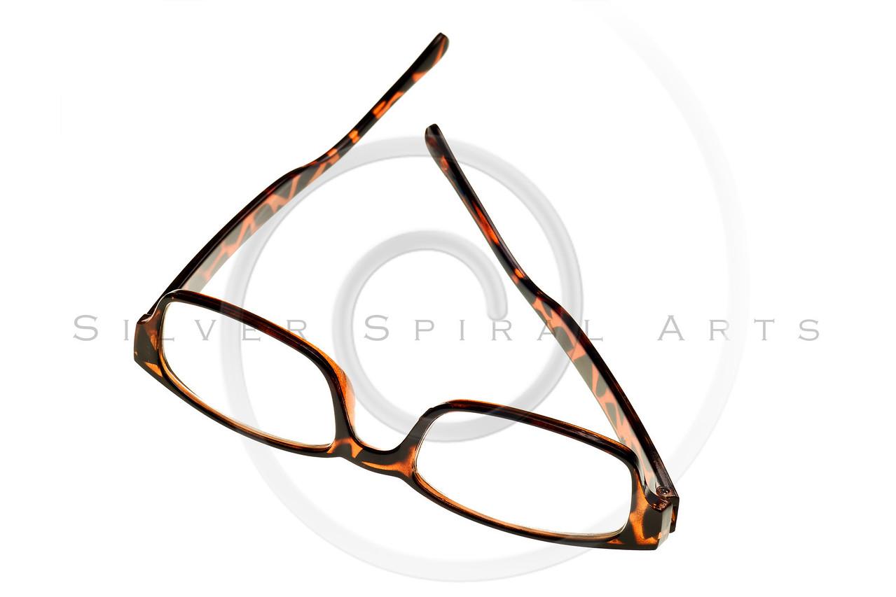 tortoise reading glasses isolated