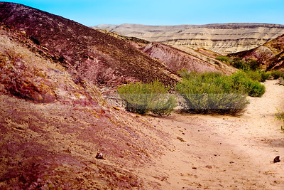 Colors of the Desert
