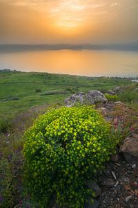 Beautiful sunset over the Sea of Galilee, Israel