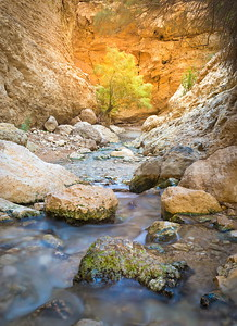Desert stream, Ein Bokek, Judean Desert