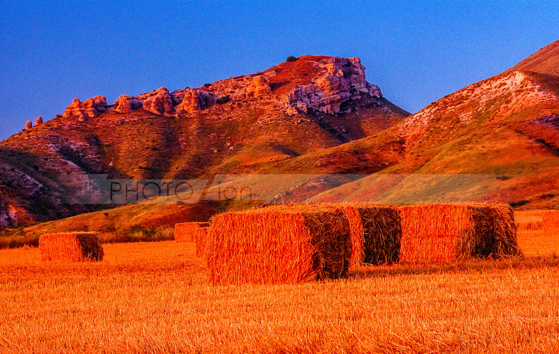 The Galilee mountains and fields