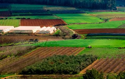 Valley of Elah fields