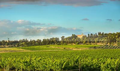 Latrun and vinyards of Ayalon valley