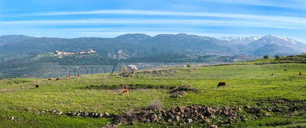 Golan Heights panorama