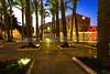 Light Rail lights seen through Palm Plaza
